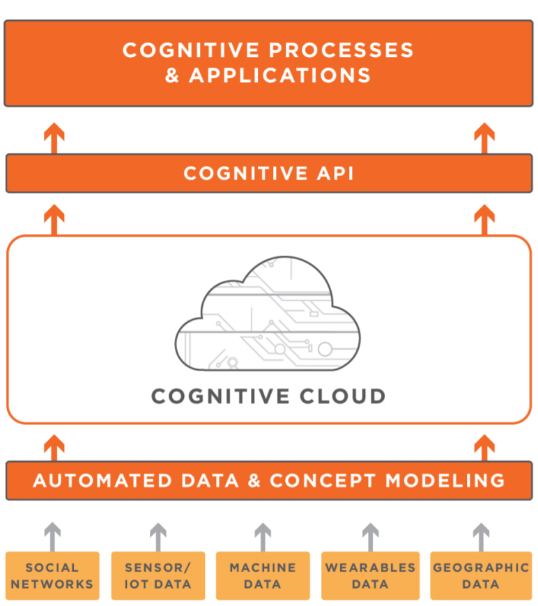 The Cognitive Insurance process and application