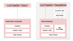 API-based Insurance Model Affinity Distribution Channel